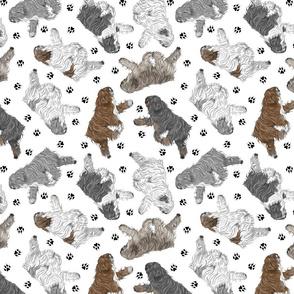 Trotting Polish Lowland Sheepdogs and paw prints - white