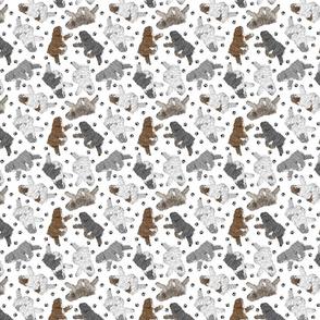 Trotting Polish Lowland Sheepdogs and paw prints - tiny white