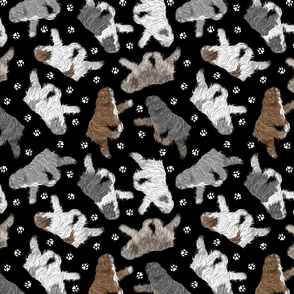Trotting Polish Lowland Sheepdogs and paw prints - black