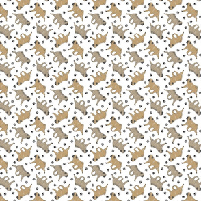 Trotting fawn Pugs and paw prints - tiny white