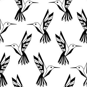 Geometric Humming Birds