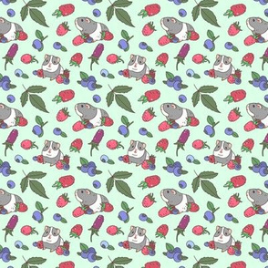Raspberry, Blueberry and Guinea Pig Pattern in Mint green background