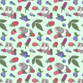 Raspberry, Blueberry and Guinea Pig Pattern in Mint green background, Small Scale