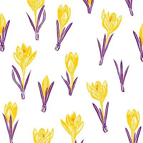 karmic crocuses