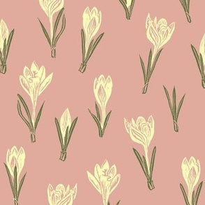 pale gold crocuses on pink