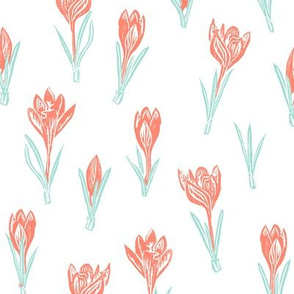 coral and mint crocuses on white