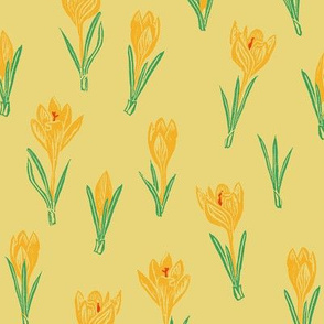 yellow crocuses on Egyptian pale gold