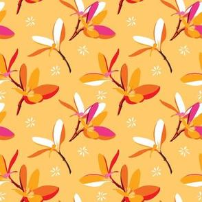 Tropical flower collaborative flower | plumeria1