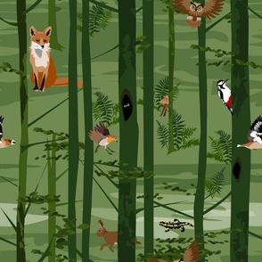 in the forest - fox, owl, rabbit, grosbeak, woodpecker, robin and salamander