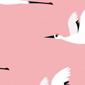 Summer is coming and so are the birds sweet Scandinavian minimal style crane bird flock girls pink jumbo