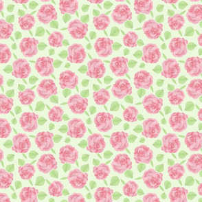 rose pom poms pink