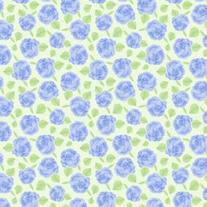 rose pom poms blue