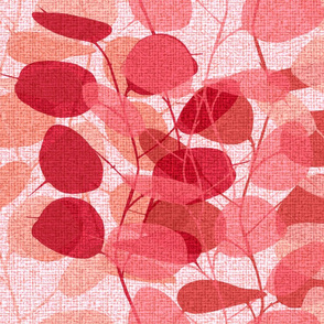 Lunaria on a Fall Day pink