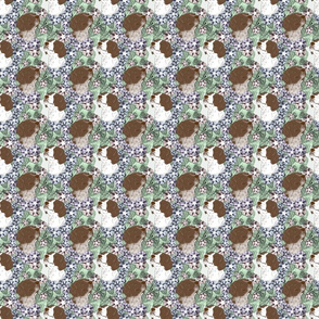 Floral French Brittany portraits C - small