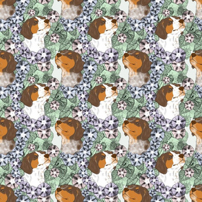 Floral French Brittany portraits E