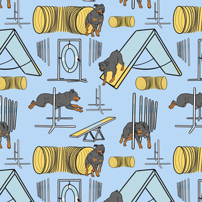 Simple Rottweiler agility dogs - blue