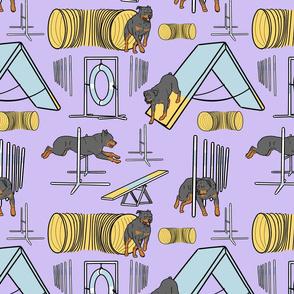 Simple Rottweiler agility dogs - purple