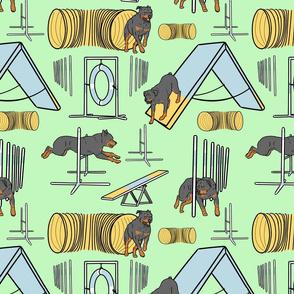 Simple Rottweiler agility dogs - green