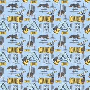 Simple Rottweiler agility dogs - small blue