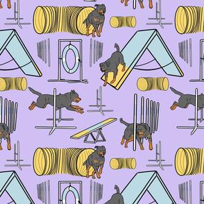 Simple tailed Rottweiler agility dogs - purple