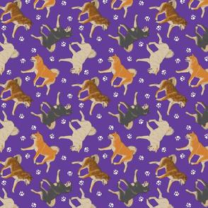 Trotting Shiba Inu and paw prints - purple