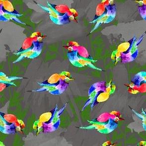cutie  birdies