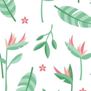 Birds of paradise botanical flower garden Hawaii summer theme pink mint jumbo