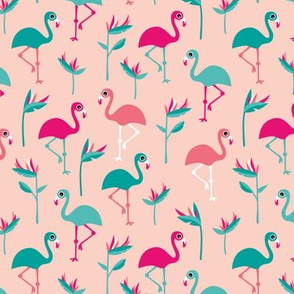 Birds of paradise botanical flower garden and flamingo beach Hawaii summer theme pink