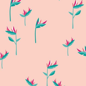 Birds of paradise botanical flower garden Hawaii summer minimal pink blue