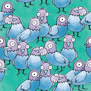 Curious Pigeons