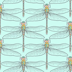 Dragonflies for Swallows (mint)