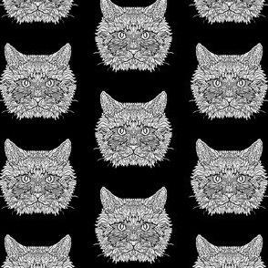 Black and White Ragdoll Cat Pattern