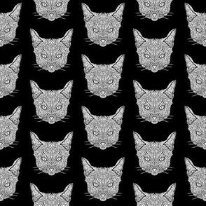 Abyssinian Cat Pattern - White on Black