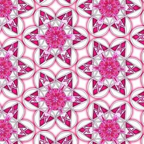 large snowflake hexagons in magenta