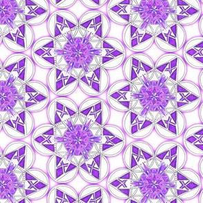large snowflake hexagons in purple