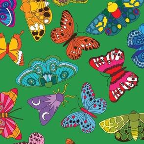 Butterfly Scatter