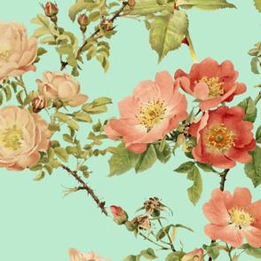 Watercolor English Rose ~ Arsenic