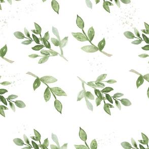 Green Foliage - Boxwood watercolor