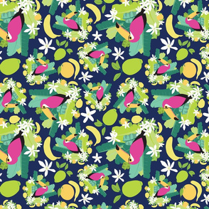 Toucans Everywhere Pink