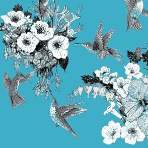 Teal, White & Gray Humming Bird