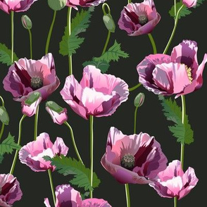 Seamless pattern with pink poppies
