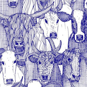 just cattle blue white