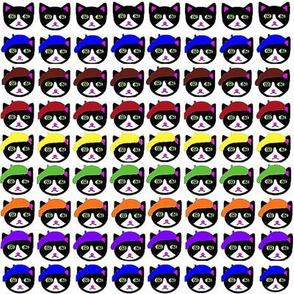 Cats Berets Rows