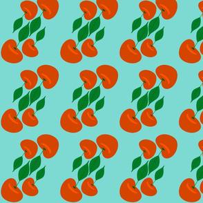 Sour Cherries-aqua-large