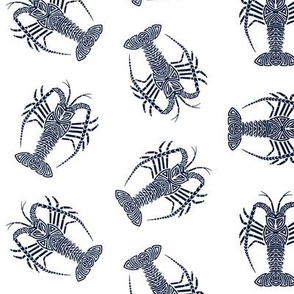 Spiny Lobster Navy on White