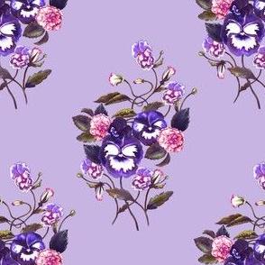 Pansy Royal Purple Lavender