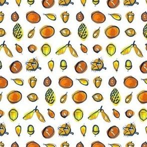 Acorn, Chestnut, Hazelnut