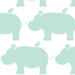 baby hippo and bird