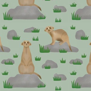 Meerkat friends (soft green)