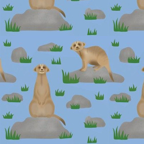 Meerkat friends (lt blue)